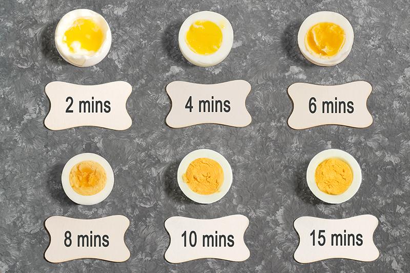 egg-cv